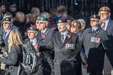 March Past, Remembrance Sunday at the Cenotaph 2016: E20 Royal Naval Medical Branch Ratings & Sick Berth Staff Association. Cenotaph, Whitehall, London SW1, London, Greater London, United Kingdom, on 13 November 2016 at 13:06, image #1810
