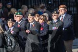 March Past, Remembrance Sunday at the Cenotaph 2016: E20 Royal Naval Medical Branch Ratings & Sick Berth Staff Association. Cenotaph, Whitehall, London SW1, London, Greater London, United Kingdom, on 13 November 2016 at 13:06, image #1811