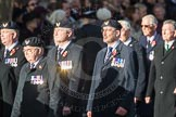 March Past, Remembrance Sunday at the Cenotaph 2016: E29 Cloud Observers Association. Cenotaph, Whitehall, London SW1, London, Greater London, United Kingdom, on 13 November 2016 at 13:07, image #1908
