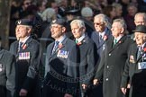 March Past, Remembrance Sunday at the Cenotaph 2016: E29 Cloud Observers Association. Cenotaph, Whitehall, London SW1, London, Greater London, United Kingdom, on 13 November 2016 at 13:07, image #1909