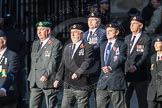 March Past, Remembrance Sunday at the Cenotaph 2016: E42 Royal Navy Photographers Association. Cenotaph, Whitehall, London SW1, London, Greater London, United Kingdom, on 13 November 2016 at 13:08, image #2026