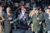 March Past, Remembrance Sunday at the Cenotaph 2016: F11 National Service Veterans Alliance. Cenotaph, Whitehall, London SW1, London, Greater London, United Kingdom, on 13 November 2016 at 13:10, image #2183