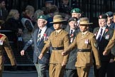 March Past, Remembrance Sunday at the Cenotaph 2016: F13 National Malayan & Borneo Veterans Association. Cenotaph, Whitehall, London SW1, London, Greater London, United Kingdom, on 13 November 2016 at 13:10, image #2216