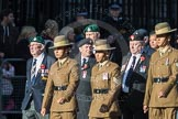 March Past, Remembrance Sunday at the Cenotaph 2016: F13 National Malayan & Borneo Veterans Association. Cenotaph, Whitehall, London SW1, London, Greater London, United Kingdom, on 13 November 2016 at 13:10, image #2217