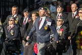 March Past, Remembrance Sunday at the Cenotaph 2016: F14 National Gulf Veterans & Families Association. Cenotaph, Whitehall, London SW1, London, Greater London, United Kingdom, on 13 November 2016 at 13:11, image #2235
