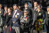 March Past, Remembrance Sunday at the Cenotaph 2016: F14 National Gulf Veterans & Families Association. Cenotaph, Whitehall, London SW1, London, Greater London, United Kingdom, on 13 November 2016 at 13:11, image #2237