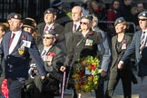 March Past, Remembrance Sunday at the Cenotaph 2016: F14 National Gulf Veterans & Families Association. Cenotaph, Whitehall, London SW1, London, Greater London, United Kingdom, on 13 November 2016 at 13:11, image #2238