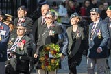 March Past, Remembrance Sunday at the Cenotaph 2016: F14 National Gulf Veterans & Families Association. Cenotaph, Whitehall, London SW1, London, Greater London, United Kingdom, on 13 November 2016 at 13:11, image #2239