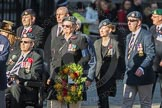 March Past, Remembrance Sunday at the Cenotaph 2016: F14 National Gulf Veterans & Families Association. Cenotaph, Whitehall, London SW1, London, Greater London, United Kingdom, on 13 November 2016 at 13:11, image #2240
