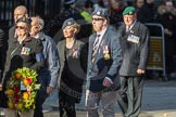 March Past, Remembrance Sunday at the Cenotaph 2016: F14 National Gulf Veterans & Families Association. Cenotaph, Whitehall, London SW1, London, Greater London, United Kingdom, on 13 November 2016 at 13:11, image #2243