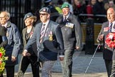 March Past, Remembrance Sunday at the Cenotaph 2016: F14 National Gulf Veterans & Families Association. Cenotaph, Whitehall, London SW1, London, Greater London, United Kingdom, on 13 November 2016 at 13:11, image #2244