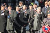 March Past, Remembrance Sunday at the Cenotaph 2016: F15 Fellowship of the Services. Cenotaph, Whitehall, London SW1, London, Greater London, United Kingdom, on 13 November 2016 at 13:11, image #2252