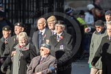March Past, Remembrance Sunday at the Cenotaph 2016: F16 Memorable Order of Tin Hats. Cenotaph, Whitehall, London SW1, London, Greater London, United Kingdom, on 13 November 2016 at 13:11, image #2257