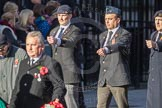 March Past, Remembrance Sunday at the Cenotaph 2016: F16 Memorable Order of Tin Hats. Cenotaph, Whitehall, London SW1, London, Greater London, United Kingdom, on 13 November 2016 at 13:11, image #2262