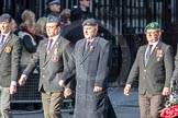 March Past, Remembrance Sunday at the Cenotaph 2016: F16 Memorable Order of Tin Hats. Cenotaph, Whitehall, London SW1, London, Greater London, United Kingdom, on 13 November 2016 at 13:11, image #2264