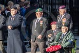 March Past, Remembrance Sunday at the Cenotaph 2016: F16 Memorable Order of Tin Hats. Cenotaph, Whitehall, London SW1, London, Greater London, United Kingdom, on 13 November 2016 at 13:11, image #2265