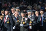 March Past, Remembrance Sunday at the Cenotaph 2016: F18 Aden Veterans Association. Cenotaph, Whitehall, London SW1, London, Greater London, United Kingdom, on 13 November 2016 at 13:11, image #2299