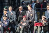 March Past, Remembrance Sunday at the Cenotaph 2016: F21 The Spirit of Normandy Trust. Cenotaph, Whitehall, London SW1, London, Greater London, United Kingdom, on 13 November 2016 at 13:12, image #2328