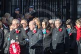 March Past, Remembrance Sunday at the Cenotaph 2016: M19 PDSA. Cenotaph, Whitehall, London SW1, London, Greater London, United Kingdom, on 13 November 2016 at 13:16, image #2645