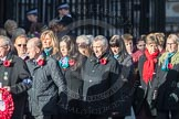 March Past, Remembrance Sunday at the Cenotaph 2016: M19 PDSA. Cenotaph, Whitehall, London SW1, London, Greater London, United Kingdom, on 13 November 2016 at 13:16, image #2646