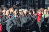 March Past, Remembrance Sunday at the Cenotaph 2016: M19 PDSA. Cenotaph, Whitehall, London SW1, London, Greater London, United Kingdom, on 13 November 2016 at 13:16, image #2647