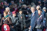 March Past, Remembrance Sunday at the Cenotaph 2016: M28 Lions Club International. Cenotaph, Whitehall, London SW1, London, Greater London, United Kingdom, on 13 November 2016 at 13:17, image #2732