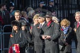 March Past, Remembrance Sunday at the Cenotaph 2016: M29 Rotary International. Cenotaph, Whitehall, London SW1, London, Greater London, United Kingdom, on 13 November 2016 at 13:17, image #2759