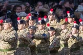 March Past, Remembrance Sunday at the Cenotaph 2016: M32 Army and combined Cadet Force. Cenotaph, Whitehall, London SW1, London, Greater London, United Kingdom, on 13 November 2016 at 13:18, image #2823