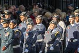 March Past, Remembrance Sunday at the Cenotaph 2016: M33 Scout Association. Cenotaph, Whitehall, London SW1, London, Greater London, United Kingdom, on 13 November 2016 at 13:18, image #2834