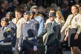 March Past, Remembrance Sunday at the Cenotaph 2016: M33 Scout Association. Cenotaph, Whitehall, London SW1, London, Greater London, United Kingdom, on 13 November 2016 at 13:18, image #2839