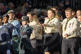 March Past, Remembrance Sunday at the Cenotaph 2016: M33 Scout Association. Cenotaph, Whitehall, London SW1, London, Greater London, United Kingdom, on 13 November 2016 at 13:18, image #2841