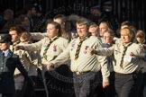 March Past, Remembrance Sunday at the Cenotaph 2016: M33 Scout Association. Cenotaph, Whitehall, London SW1, London, Greater London, United Kingdom, on 13 November 2016 at 13:18, image #2843