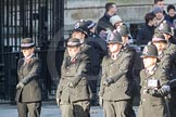 March Past, Remembrance Sunday at the Cenotaph 2016: M38 Cheshire Special Constabulary. Cenotaph, Whitehall, London SW1, London, Greater London, United Kingdom, on 13 November 2016 at 13:19, image #2917