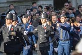 March Past, Remembrance Sunday at the Cenotaph 2016: M40 Richmond Volunteer Police Cadets. Cenotaph, Whitehall, London SW1, London, Greater London, United Kingdom, on 13 November 2016 at 13:19, image #2939
