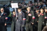March Past, Remembrance Sunday at the Cenotaph 2016: M42 SPPW - Friends of Polish Veterans Association. Cenotaph, Whitehall, London SW1, London, Greater London, United Kingdom, on 13 November 2016 at 13:19, image #2964