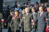 March Past, Remembrance Sunday at the Cenotaph 2016: M42 SPPW - Friends of Polish Veterans Association. Cenotaph, Whitehall, London SW1, London, Greater London, United Kingdom, on 13 November 2016 at 13:19, image #2969