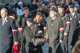 March Past, Remembrance Sunday at the Cenotaph 2016: M42 SPPW - Friends of Polish Veterans Association. Cenotaph, Whitehall, London SW1, London, Greater London, United Kingdom, on 13 November 2016 at 13:19, image #2974