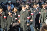 March Past, Remembrance Sunday at the Cenotaph 2016: M42 SPPW - Friends of Polish Veterans Association. Cenotaph, Whitehall, London SW1, London, Greater London, United Kingdom, on 13 November 2016 at 13:19, image #2975