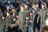 March Past, Remembrance Sunday at the Cenotaph 2016: M42 SPPW - Friends of Polish Veterans Association. Cenotaph, Whitehall, London SW1, London, Greater London, United Kingdom, on 13 November 2016 at 13:19, image #2976