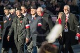 March Past, Remembrance Sunday at the Cenotaph 2016: M42 SPPW - Friends of Polish Veterans Association. Cenotaph, Whitehall, London SW1, London, Greater London, United Kingdom, on 13 November 2016 at 13:19, image #2979