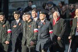 March Past, Remembrance Sunday at the Cenotaph 2016: M42 SPPW - Friends of Polish Veterans Association. Cenotaph, Whitehall, London SW1, London, Greater London, United Kingdom, on 13 November 2016 at 13:19, image #2982