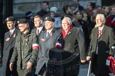 March Past, Remembrance Sunday at the Cenotaph 2016: M42 SPPW - Friends of Polish Veterans Association. Cenotaph, Whitehall, London SW1, London, Greater London, United Kingdom, on 13 November 2016 at 13:19, image #2984
