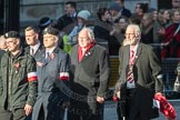 March Past, Remembrance Sunday at the Cenotaph 2016: M42 SPPW - Friends of Polish Veterans Association. Cenotaph, Whitehall, London SW1, London, Greater London, United Kingdom, on 13 November 2016 at 13:19, image #2985