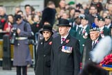 March Past, Remembrance Sunday at the Cenotaph 2016. Cenotaph, Whitehall, London SW1, London, Greater London, United Kingdom, on 13 November 2016 at 12:25, image #327