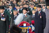 March Past, Remembrance Sunday at the Cenotaph 2016. Cenotaph, Whitehall, London SW1, London, Greater London, United Kingdom, on 13 November 2016 at 12:25, image #328