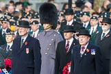 March Past, Remembrance Sunday at the Cenotaph 2016. Cenotaph, Whitehall, London SW1, London, Greater London, United Kingdom, on 13 November 2016 at 12:25, image #329