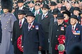 March Past, Remembrance Sunday at the Cenotaph 2016. Cenotaph, Whitehall, London SW1, London, Greater London, United Kingdom, on 13 November 2016 at 12:25, image #330