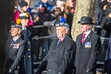 March Past, Remembrance Sunday at the Cenotaph 2016. Cenotaph, Whitehall, London SW1, London, Greater London, United Kingdom, on 13 November 2016 at 12:29, image #346