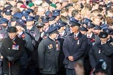 March Past, Remembrance Sunday at the Cenotaph 2016. Cenotaph, Whitehall, London SW1, London, Greater London, United Kingdom, on 13 November 2016 at 12:34, image #351