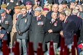 March Past, Remembrance Sunday at the Cenotaph 2016. Cenotaph, Whitehall, London SW1, London, Greater London, United Kingdom, on 13 November 2016 at 12:34, image #352